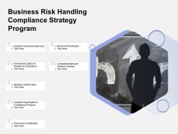 Business Risk Handling Compliance Strategy Program