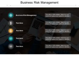 Business Risk Management Ppt Powerpoint Presentation Gallery Images Cpb