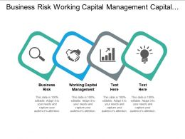 Business Risk Working Capital Management Capital Expenditure Planning Process Cpb