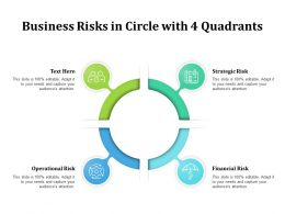 Business Risks In Circle With 4 Quadrants