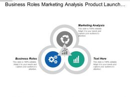 Business Roles Marketing Analysis Product Launch Marketing Plan