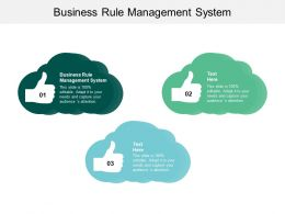 Business Rule Management System Ppt Powerpoint Presentation Professional Diagrams Cpb