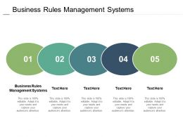 Business Rules Management Systems Ppt Powerpoint Presentation Slides Visuals Cpb