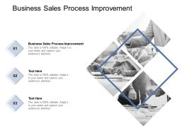 Business Sales Process Improvement Ppt Powerpoint Presentation Layouts Cpb
