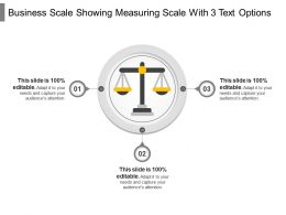 Business Scale Showing Measuring Scale With 3 Text Options