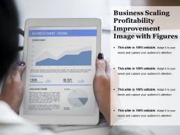 Business Scaling Profitability Improvement Image With Figures