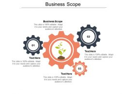 Business Scope Ppt Powerpoint Presentation File Layout Ideas Cpb