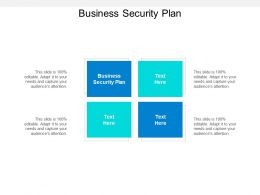 Business Security Plan Ppt Powerpoint Presentation Pictures Layout Cpb