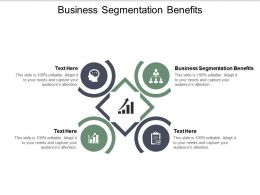 Business Segmentation Benefits Ppt Powerpoint Presentation Professional Example Cpb