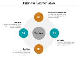 Business Segmentation Ppt Powerpoint Presentation Model Deck Cpb