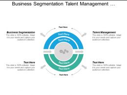 Business Segmentation Talent Management Organizational Culture Assessment Tools Cpb