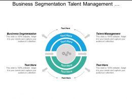 Business Segmentation Talent Management Organizational Culture Assessment Tools Cpb