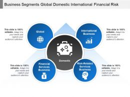 Business Segments Global Domestic International Financial Risk