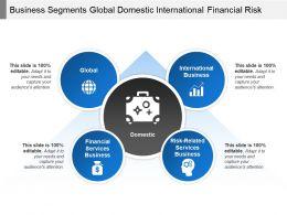 Business Segments Global Domestic International Financial Risk