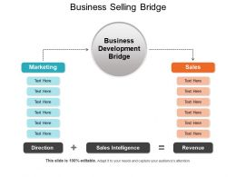 Business Selling Bridge Powerpoint Slide Deck Samples