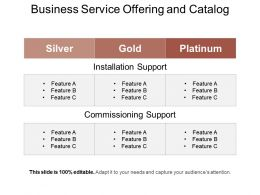 Business Service Offering And Catalog Example Of Ppt
