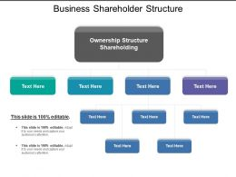 Business Shareholder Structure