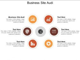 Business Site Audit Ppt Powerpoint Presentation Layouts Inspiration Cpb