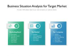 Business Situation Analysis For Target Market