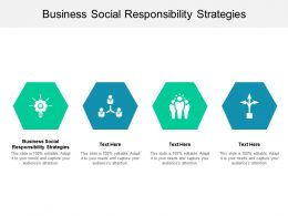 Business Social Responsibility Strategies Ppt Powerpoint Presentation Professional Master Slide Cpb