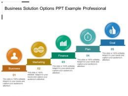 Business Solution Options Ppt Example Professional
