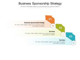 Business Sponsorship Strategy Ppt Powerpoint Presentation Professional Backgrounds Cpb