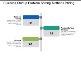 Business Startup Problem Solving Methods Pricing Structures Sales Goal