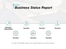 Business Status Report Ppt Powerpoint Presentation Ideas Graphics Pictures Cpb