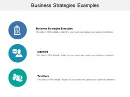 Business Strategies Examples Ppt Powerpoint Presentation Deck Cpb