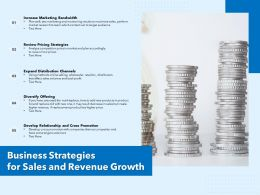 Business Strategies For Sales And Revenue Growth