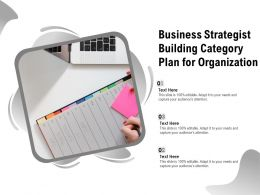 Business Strategist Building Category Plan For Organization