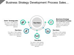 Business Strategy Development Process Sales Strategy Plan Management Tools Cpb