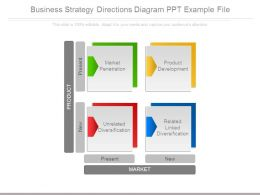 Business Strategy Directions Diagram Ppt Example File
