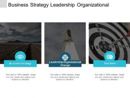 Business Strategy Leadership Organizational Change Effective Performance Management Cpb