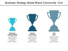 Business Strategy Model Brand Community Crm System Business Positioning Cpb