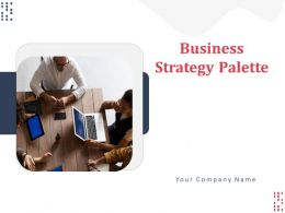 Business Strategy Palette Powerpoint Presentation Slides