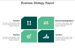 Business Strategy Report Ppt Powerpoint Presentation Professional Inspiration Cpb
