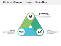 Business Strategy Resources Capabilities Ppt Powerpoint Presentation Vector Cpb