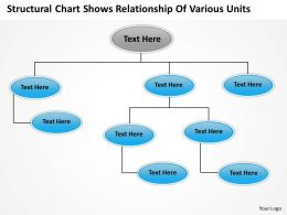 business_structure_chart_structural_shows_relationship_of_various_units_powerpoint_templates_0515_Slide01