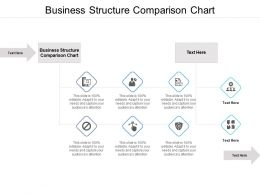 Business Structure Comparison Chart Ppt Powerpoint Presentation Infographics Themes Cpb