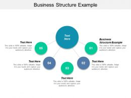 Business Structure Example Ppt Powerpoint Presentation Templates Cpb
