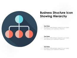 Business Structure Icon Showing Hierarchy