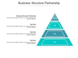 Business Structure Partnership Ppt Powerpoint Presentation Icon Aids Cpb