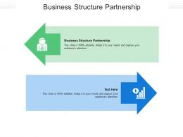 Business Structure Partnership Ppt Powerpoint Presentation Styles Deck Cpb