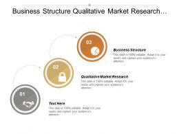 Business Structure Qualitative Market Research Management Information System