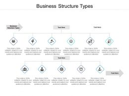 Business Structure Types Ppt Powerpoint Presentation Outline Demonstration Cpb