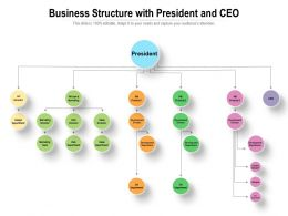 Business Structure With President And CEO