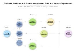 Business Structure With Project Management Team And Various Departments