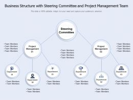 Business Structure With Steering Committee And Project Management Team