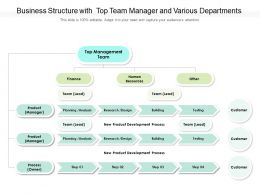 Business Structure With Top Team Manager And Various Departments